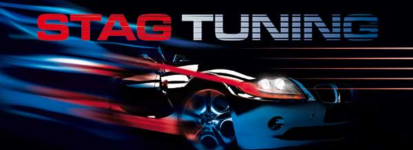 stag_tuning1